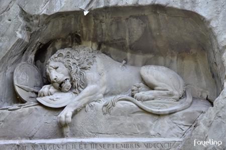 ライオン02.jpg